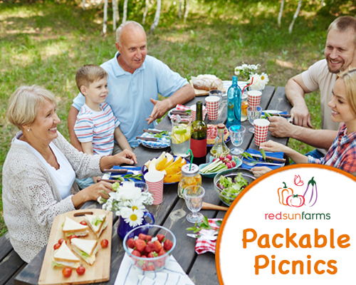 Packable Picnics