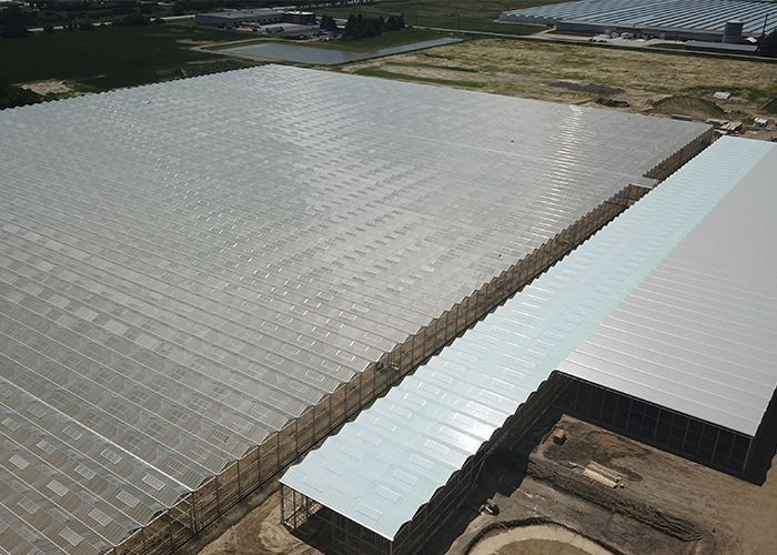 Red Sun Farms Announces high-tech greenhouse growt...
