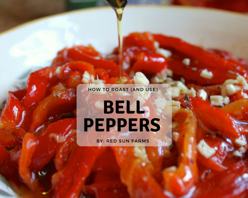 How to Roast (& Use) Bell Peppers