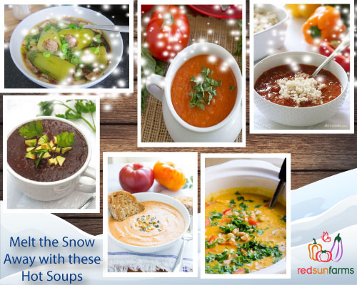 Soup Recipe Roundup by Red Sun Farms