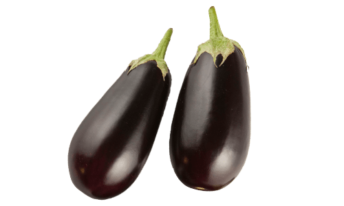Traditional Series Eggplants