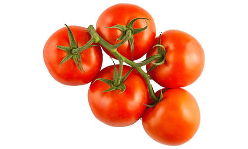 Traditional Series Tomatoes